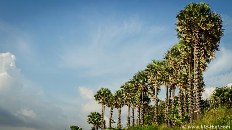 Мыс Промтхеп Кейп, Пхукет, Таиланд