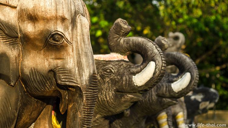 Слоны на мысе Промтхеп Кейп, Пхукет, Таиланд
