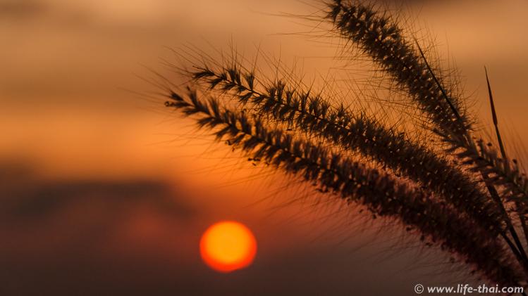Закат на Промтхепе, Пхукет, Таиланд