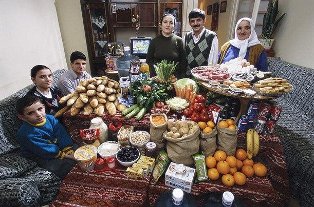 Турция: семья Кадик из Стамбула Расходы на продукты питания в течение одной недели: 198,48 новых турецких лир или $ 145,88