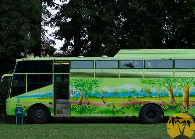 Автобус зелёной зоны