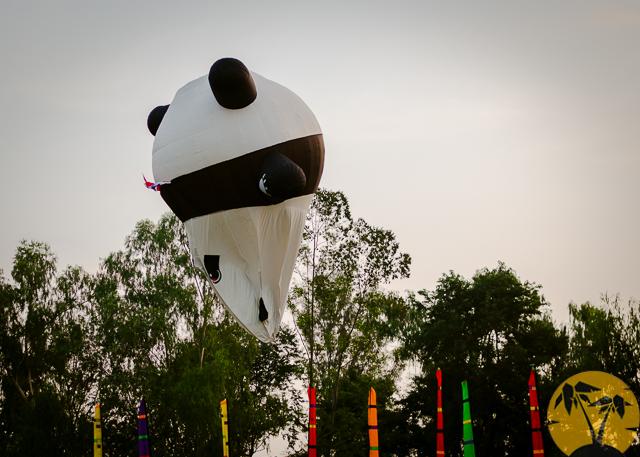 Панда-шар идёт на посадку