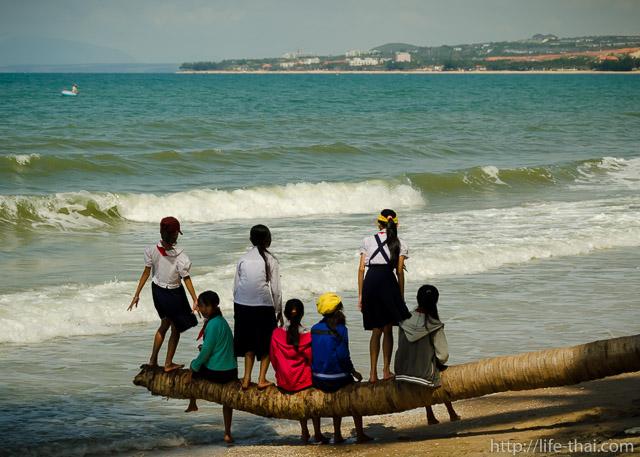 Вьетнамские школьницы на пальме