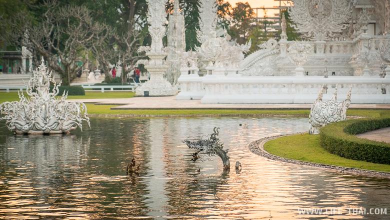 Дракон в воде, Белый храм, Чианграй