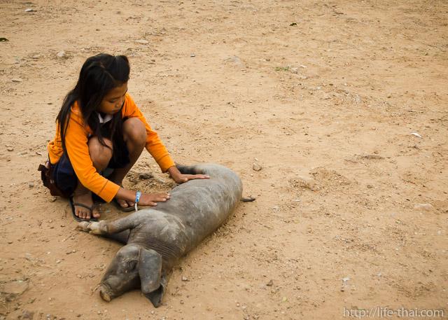 Девочка, Камбоджа