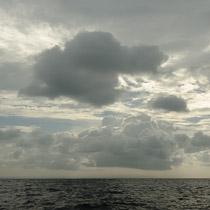 Киты, Шри Ланка