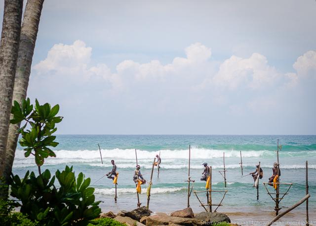 Рыбаки, Шри Ланка