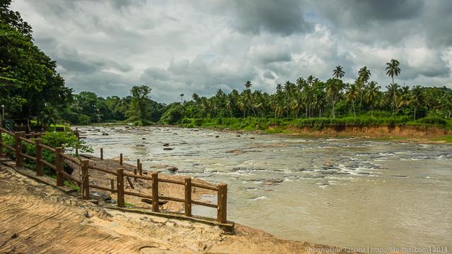 река, Шри Ланка