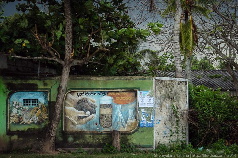 Перед грозой, Шри Ланка