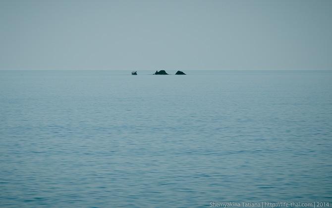 Краб-камень, Тихая бухта, Крым
