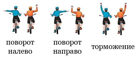Сигналы поворотов рукой