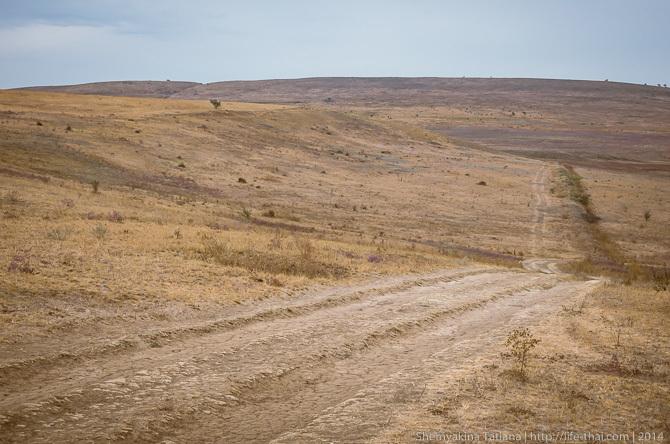 Дорога, керченские степи
