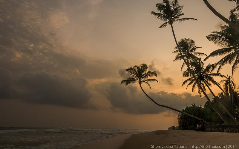 Закат, Шри Ланка