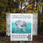 Про оленей в Австрии
