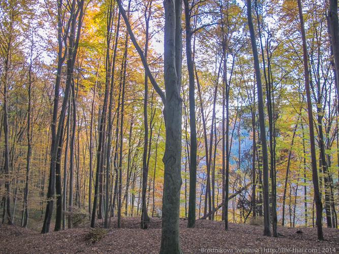 Осень в Австрии, Штирия