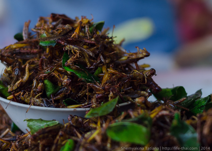 Жареные кузнечики. Лаосская еда.