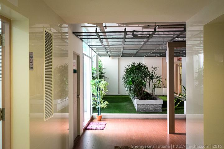Зелёный коридор