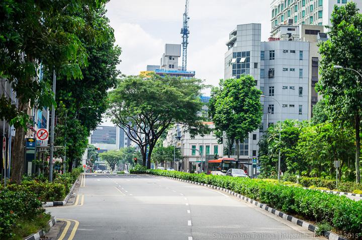 Дорожное движение, Сингапур