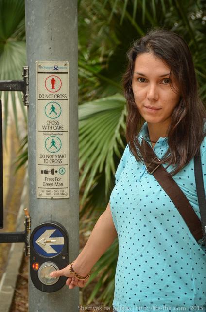 Я в Сингапуре на пешеходном переходе
