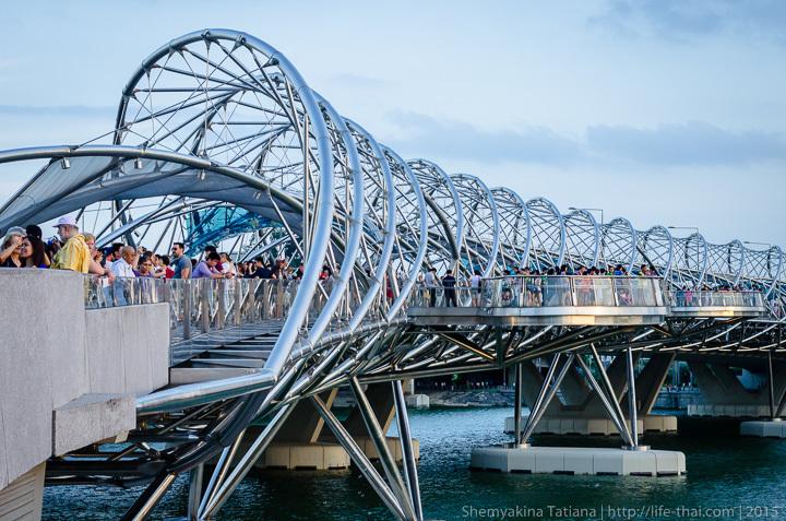 Двойная спираль, Сингапур