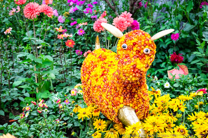 Цветочная коза, Flower Dome, Сингапур