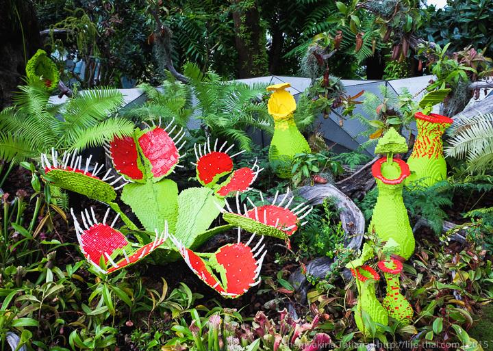 Венерина Мухоловка, Сады у залива, Сингапур фото