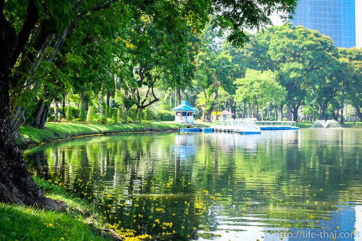 Парк Люмпини, Бангкок, Таиланд