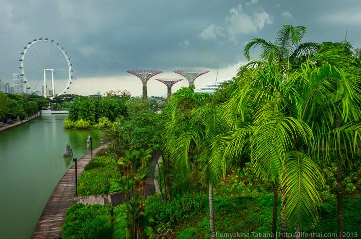 Сады у залива, Сингапур, фото