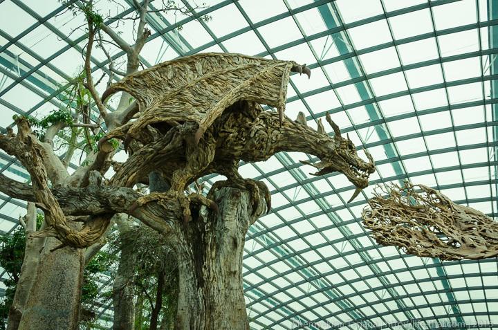 Деревяный дракон, Flower Dome, Сингапур