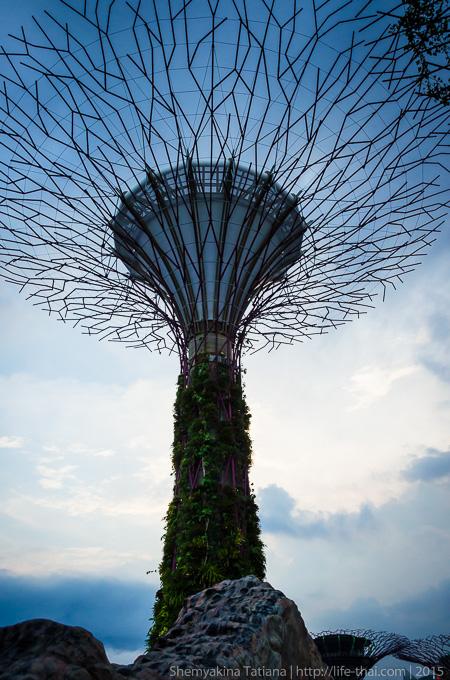 Супер-дерево, Сингапур