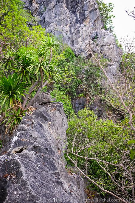 Национальный парк Таао Ко Са, Таиланд