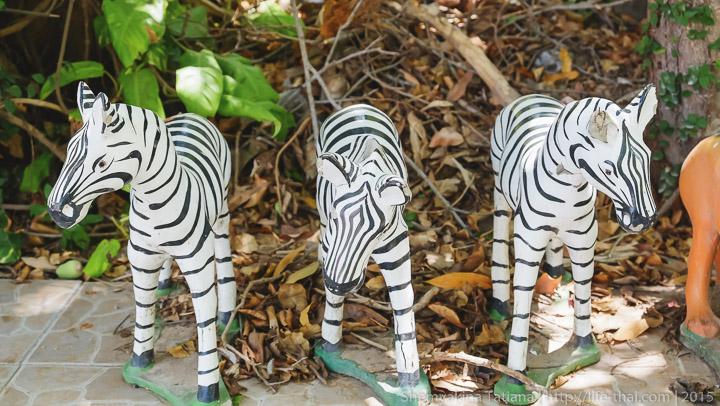 Зебры в тайском храме, Хуа Хин