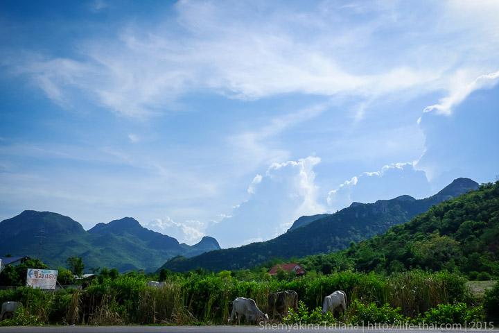 Дорога в нац. парк Кхао Сам Рои Йот, Таиланд