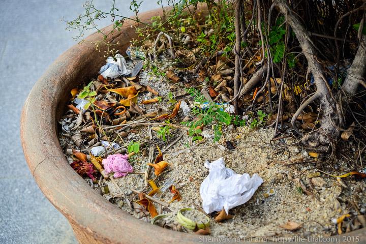Пенанг, Малайзия, мусор в клумбах