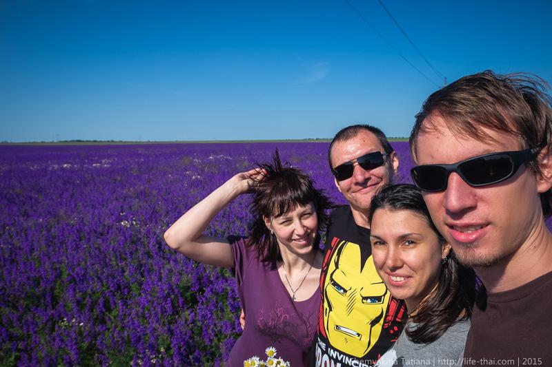 Крым, цветы