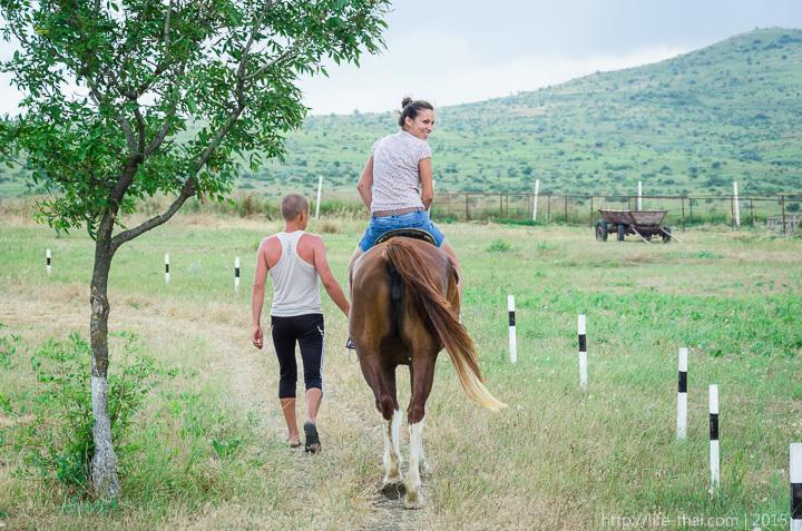 Кататние на лошадях, ферма страусов в Керчи