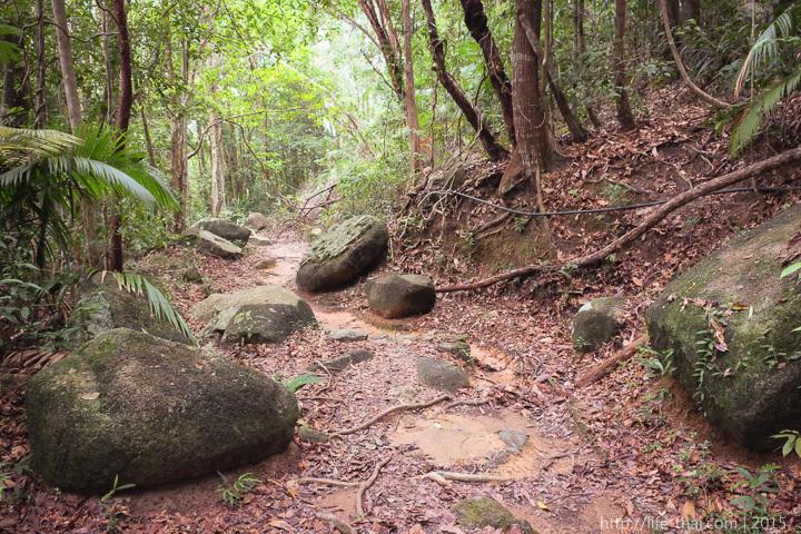 Дорога к Маяку, Пенанг, Малайзия