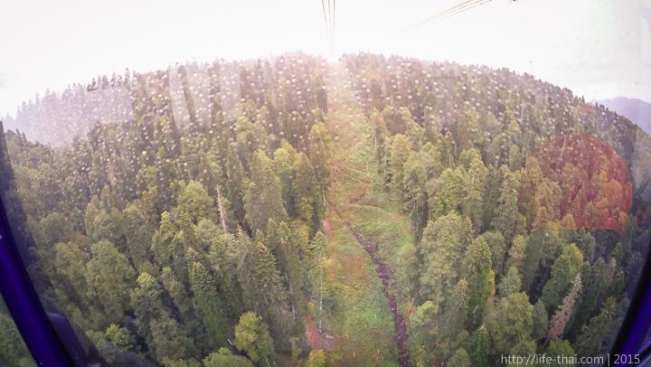 Красная поляна, Сочи, Россия