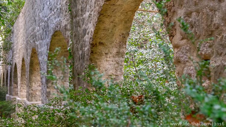 Ботанический сад Трстено