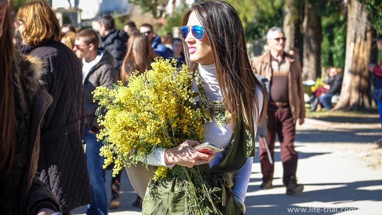 Фестиваль мимозы в Черногории