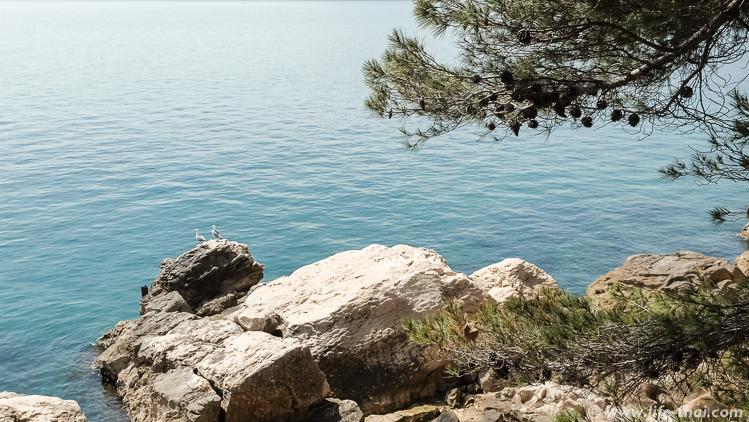 Вилла Тито в Сплите, Хорватия