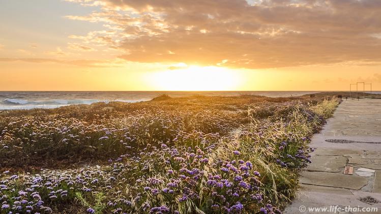 Закаты на набережной на Кипре