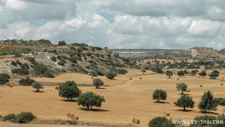 Кипрский ландшафт, май
