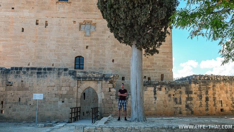 Игорь и дерево, Лимассольская крепость, достопримечательности Кипра