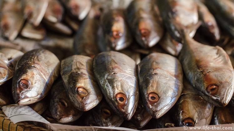 Рыба на тайском рынке
