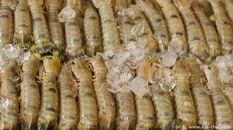 Морские раки, Таиланд