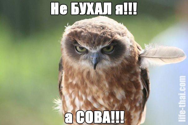 Смешные слова в болгарском языке