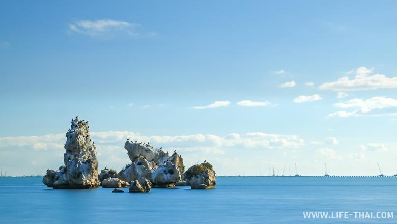 Камень с бакланами, Керчь, Крым