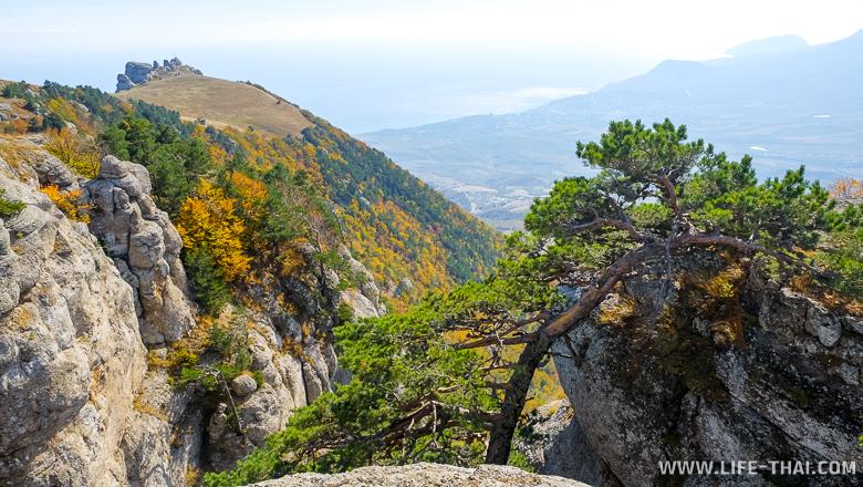 Вид на Алушту с вершины Демерджи, Крым