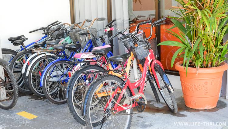В отеле можно взять напрокат велосипеды, Малайзия, Пинанг